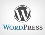 WordPress_logo_kucuk_webeyn