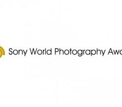 Sony-fotograf-odulleri-webeyn