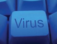 Virus-photo