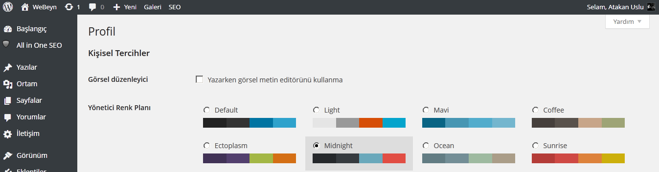 WordPress-3-8-webeyn-yeni-2