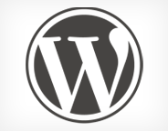 WordPress-logo-kucuk-webeyn