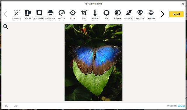 Yandex-Disk-fotograf-duzenleyicisi-webeyn