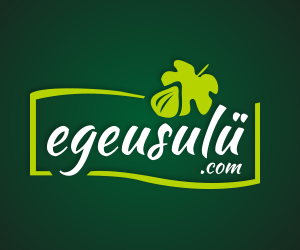 EgeUsulü